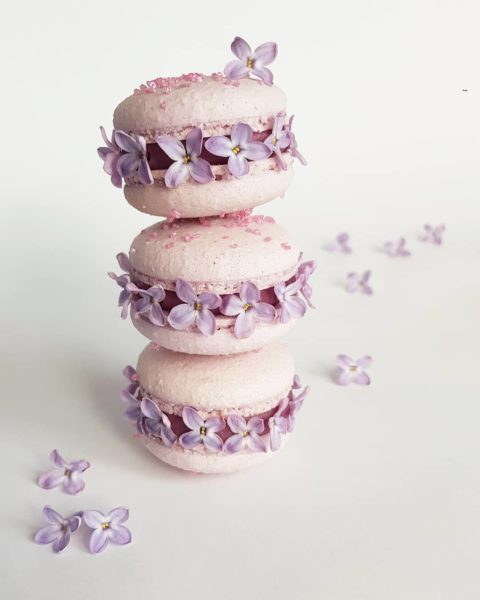 Small Desserts Made With Love and Macaron 446